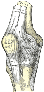 nyújtáskor fájdalom a csípőízületben eszközök ízületek kezelésére