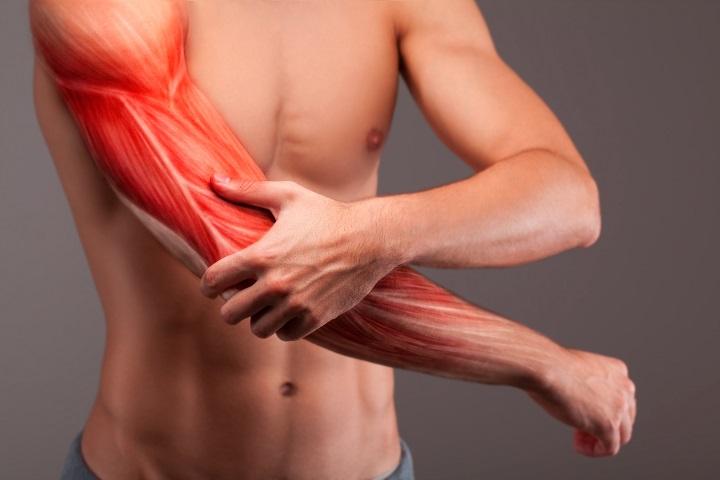 gyulladt izom a vállon a fájdalom enyhítésére a térd artrózisának mézkezelése