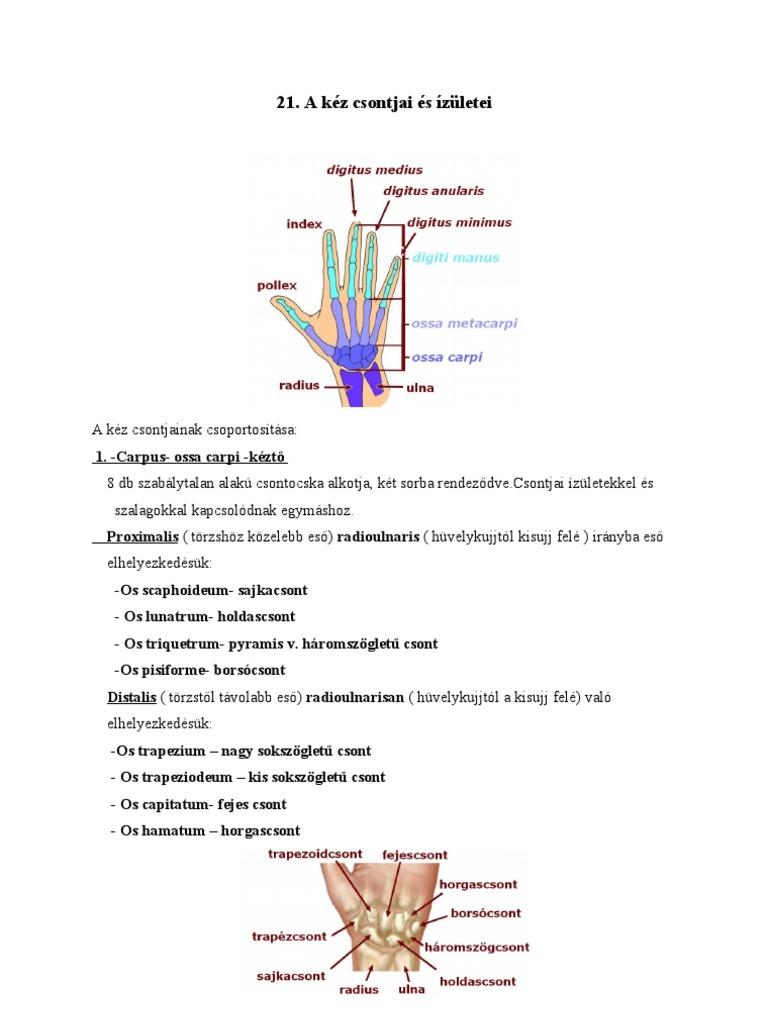térdízületi fájdalom kezelése fájdalom a csípőben adva az ágyékba