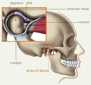 temporomandibuláris ízület kezelése