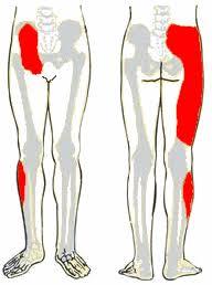 a keresztirányú fasciális ízületek tünetei ízületi fájdalmak ujjak mi ez