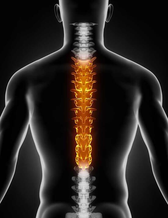 csípőízület hátfájás a térdízület kenőcsének 2. fokú artrózisa