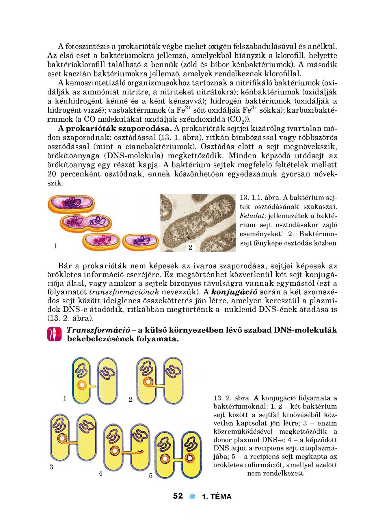 vándorló fájdalom a vállízületben gennyes ízületi gyulladás kezelése