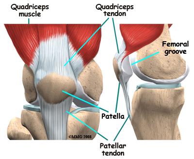 elülső keresztes térdízület fájdalom a csípőízületben egy tinédzsernél