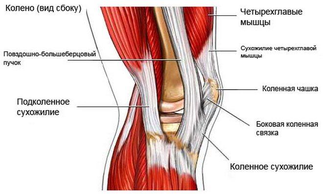 térd deformáló artrózisa 4 fokos kezelés kezelje az ízületeket retonnal